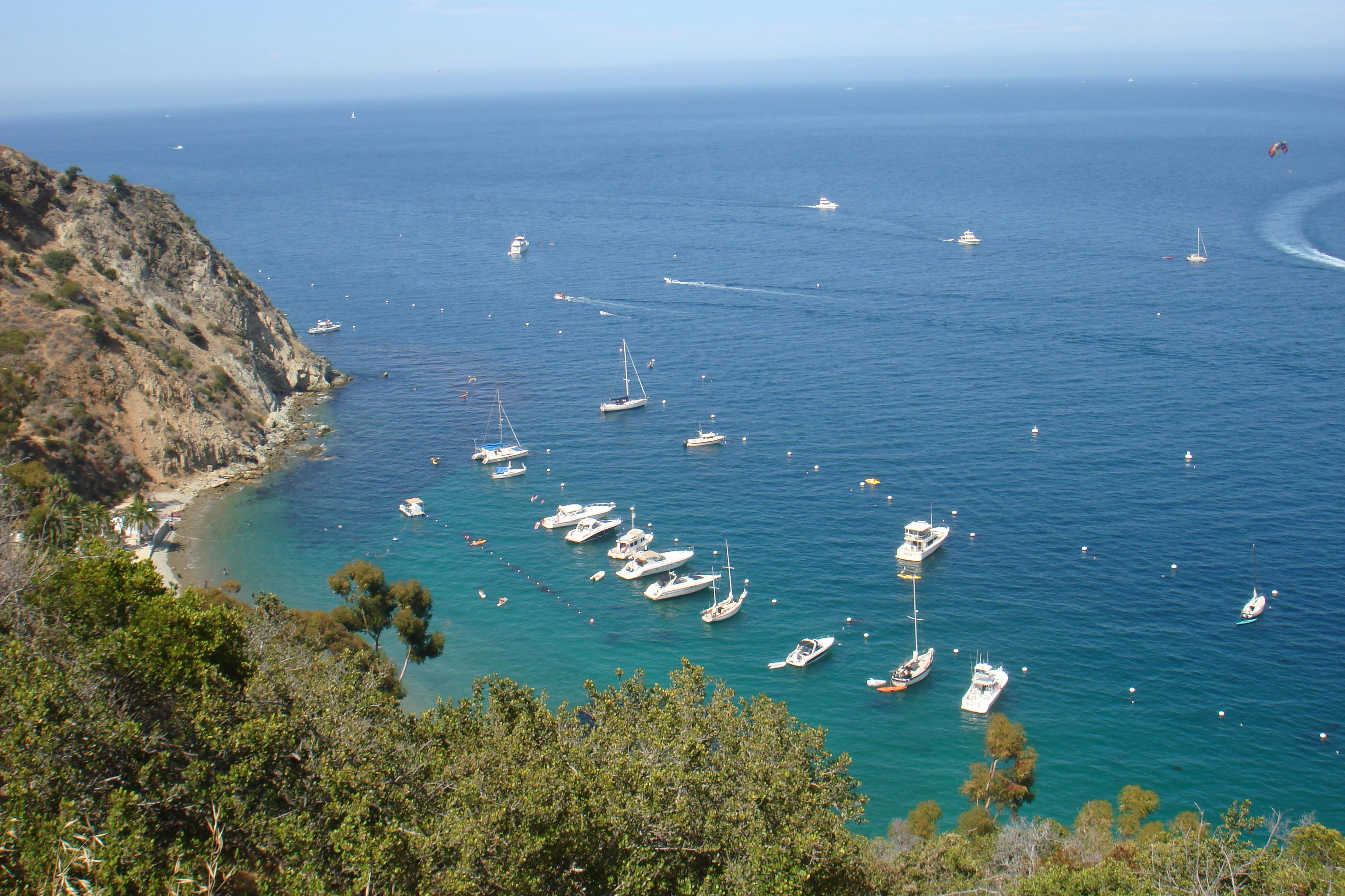 Catalina island trench coat travels for Catalina bay