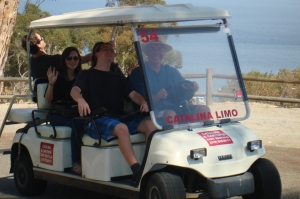The other golf cart
