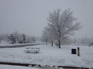 snowinfrisbeegolfpark