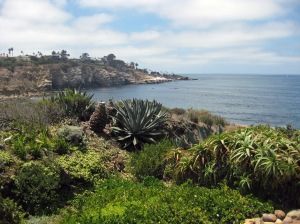 Point La Jolla, photo taken by Tom Courtney